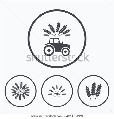 Essay on agriculture and industries